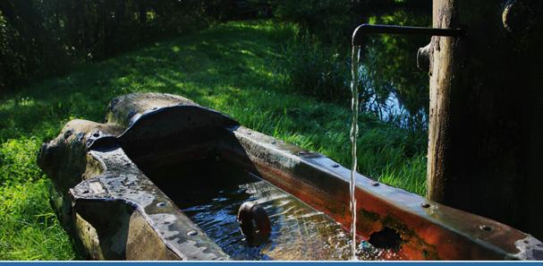 Der Brunnen im eigenen Garten